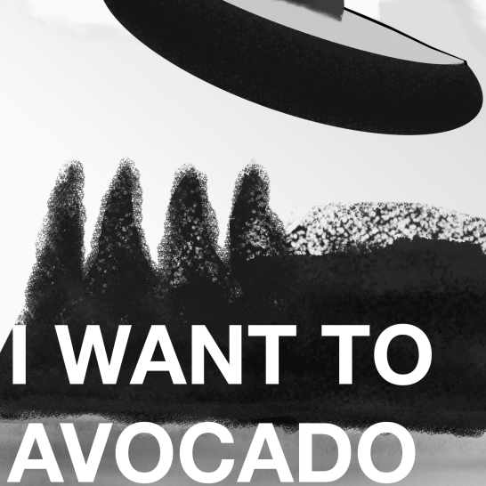 I WANT TO AVACARDO grey